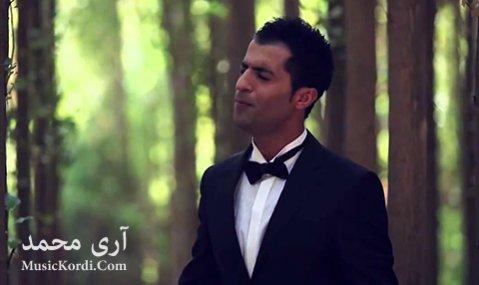 دانلود آهنگ غریب ماوم از آری محمد