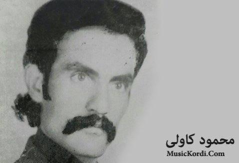 دانلود آهنگ ههنار ههنار از محمود کاولی